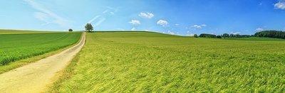 panorama-3629120_960_720.jpg